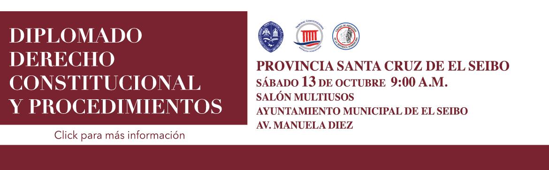 Imagen de Diplomado derecho constitucional y procedimientos