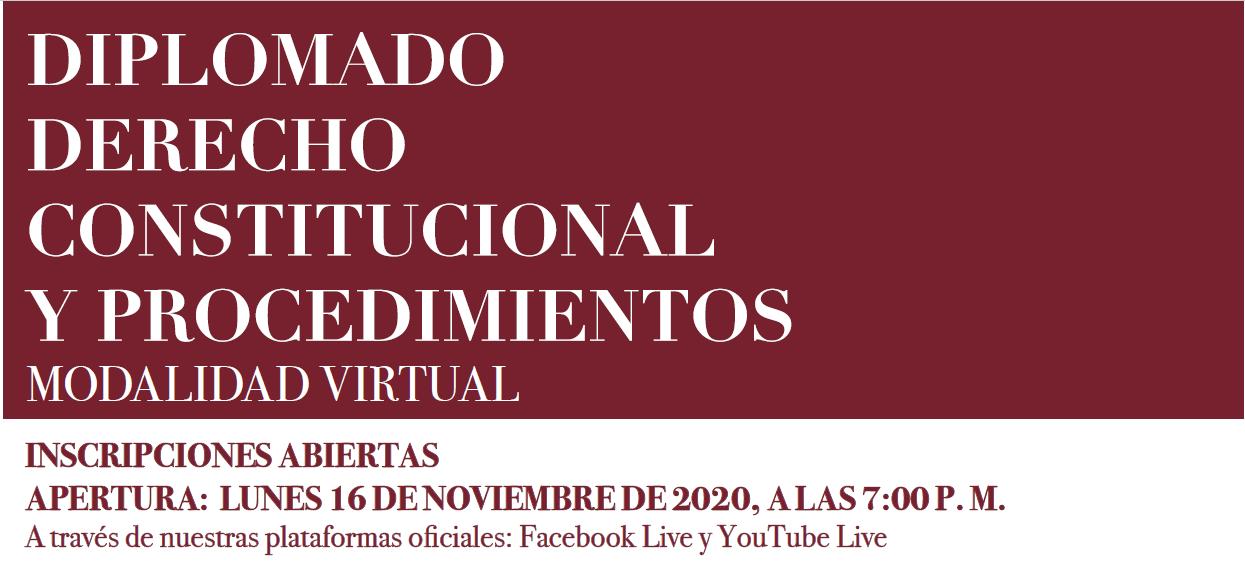Imagen de Diplomado en Derecho Constitucional y Procedimientos - 2020